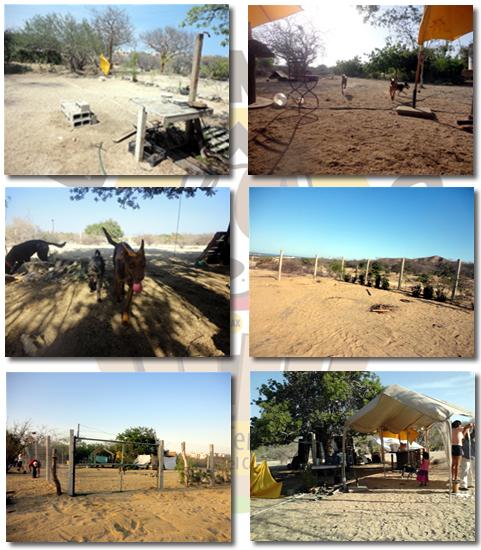 El Ranchito Refugio para Perros en Situación de Abandono