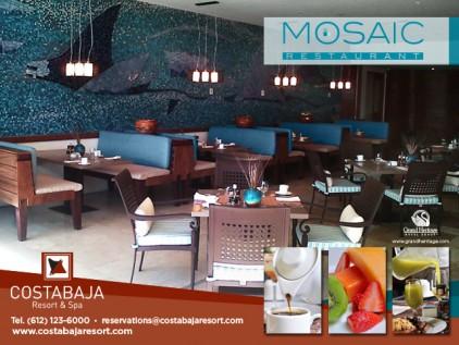 Banner-Mosaic1