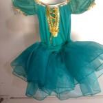 Renta de Disfraces en La Paz BCS. Fantasia Disfraces
